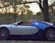 Bugatti Veyron replica (10)