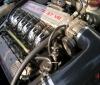 Car Legends Alfa Romeo 147 GTA AM Autodelta (4)