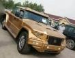 Dartz Kombat Gold Russian China Edition (1)