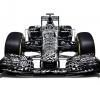 Red Bull RB11 (3)