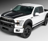 Roush Ford F-150 (1)
