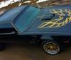 A beautiful 1977 Pontiac Trans Am Bandit is up for sale (2)